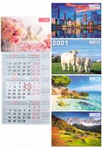 Календарь настенный квартальный на 2021 г. (1 пружина)