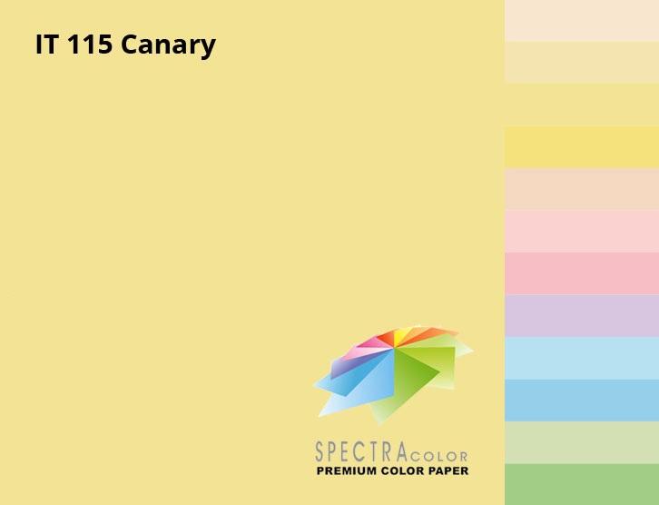 Бумага цветная Color A4 пастель 80г./м2. Canary, 100листов, св.-желт. Spectra Color - фото 3