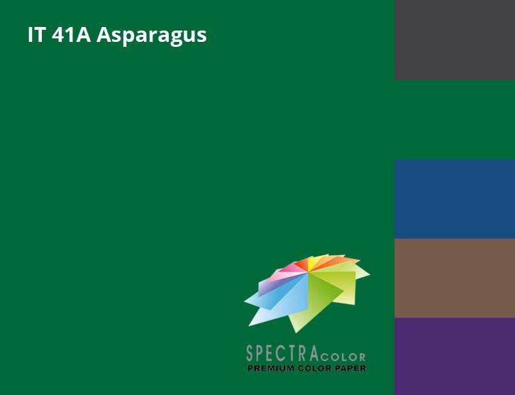 Бумага цветная Color A4 интенсив 80г./м2. Asparagus, 500листов, темно-зелен. Spectra Color - фото 1
