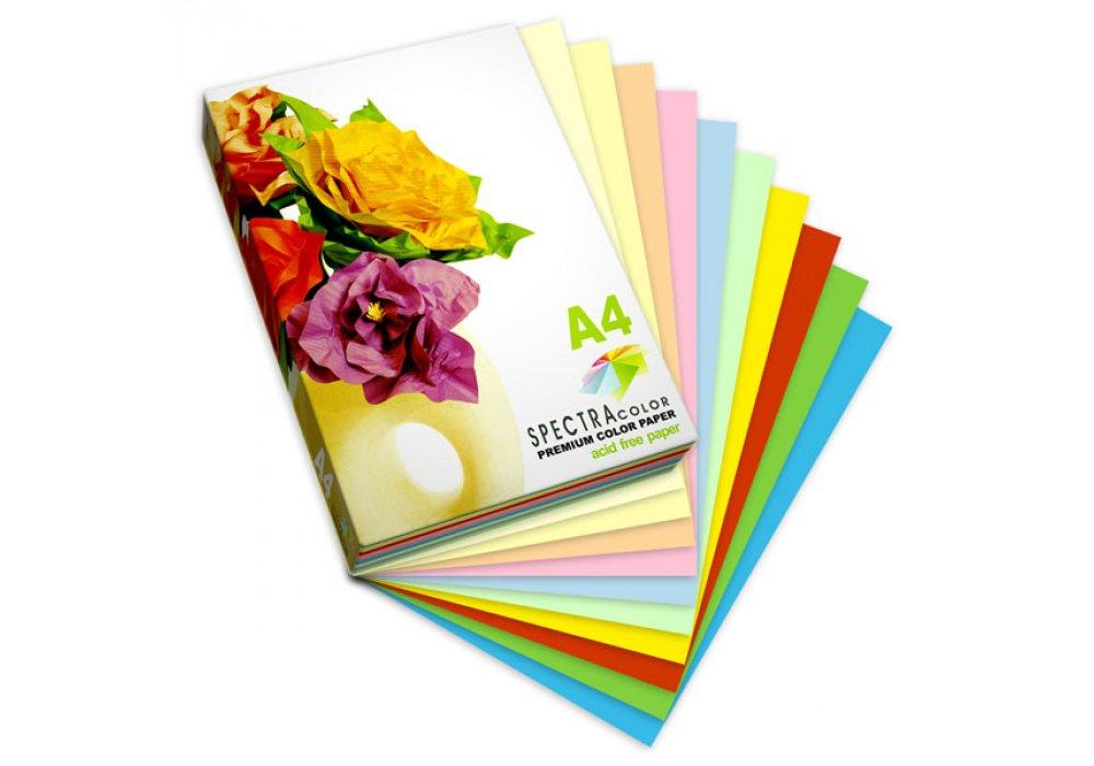 Бумага цветная Color A4 интенсив 80г./м2. Rainbow Pack Deep, 100листов, 10 цветов Spectra Color - фото 2