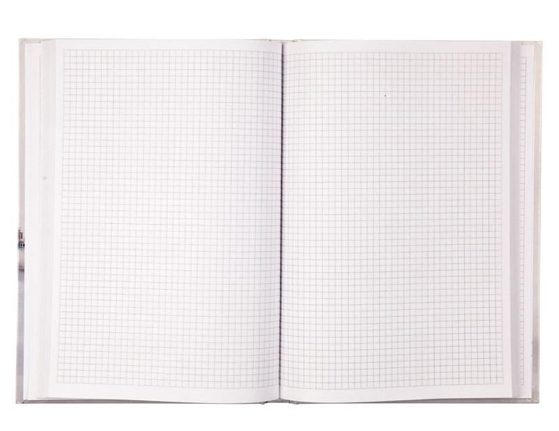 Книга учета 192л. твердый переплет, офсет, кл. Dubai Axent - фото 4